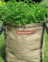 Growing Carrots inContainers