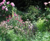 Letchworth Open Gardens