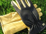 The Ultimate Gardening Glove