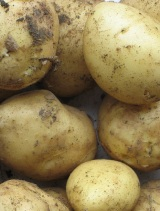 Allotment New Potatoes (First Earlies)